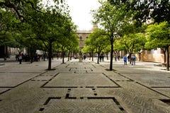 Seville domkyrka och de Giralda sikterna från trädgården av nollan royaltyfri bild