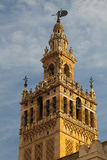 Seville domkyrka på solnedgången spain Royaltyfria Bilder