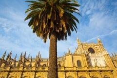 Seville domkyrka på solnedgången spain Royaltyfri Foto
