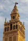 Seville domkyrka på solnedgången spain Royaltyfri Bild