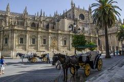 Seville domkyrka, Spanien Arkivbild