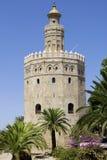 Seville ES - CIRCA AUGUSTI 2008 - Torre de oro (guld- torn) circ Arkivbild