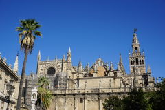 Seville katedra obraz royalty free