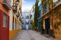 Seville Macarena dzielnicy fasady Sevilla Hiszpania Zdjęcie Royalty Free