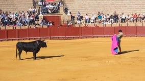 Seville, Maj - 16: Hiszpański torero wykonuje bullfight przy th obrazy royalty free