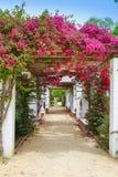 Seville maria luisa parkerar trädgårdar Spanien arkivfoton