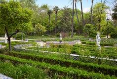 Seville maria luisa parkerar trädgårdar Spanien royaltyfria bilder