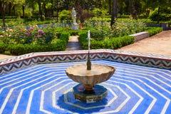 Seville maria luisa parkerar trädgårdar Spanien royaltyfri bild