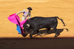 Seville - May 16: Spanish torero is performing a bullfight at th Royalty Free Stock Photography