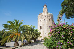 Seville - The medieval tower Torre del Oro. On the waterfront stock photography