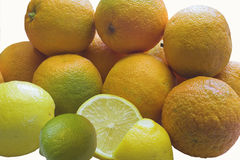 Seville Oranges. Lemons and a lime piled up and ready for processing into home-made marmalade Royalty Free Stock Photos