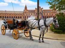 Seville Sevilla Plaza de Espana Andalusia Spain. Seville Sevilla Plaza de Espana  horse carriages Andalusia Spain square Royalty Free Stock Photos
