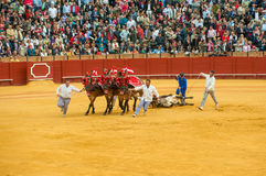 SEVILLE, SPAIN - April, 28: Corrida at Maestranza bullring on Ap Royalty Free Stock Images