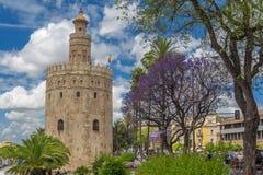 seville Spain Kwitnący jakaranda i obrazy stock