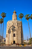 Seville Torre del Oro tower in Sevilla Spain. Seville Torre del Oro tower in Sevilla Andalusia Spain royalty free stock photos