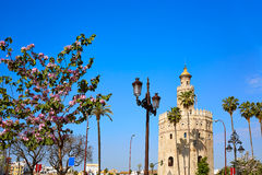 Seville Torre del Oro tower in Sevilla Spain. Seville Torre del Oro tower in Sevilla Andalusia Spain royalty free stock photography