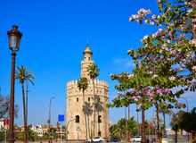 Seville Torre del Oro tower in Sevilla Spain. Seville Torre del Oro tower in Sevilla Andalusia Spain stock photos