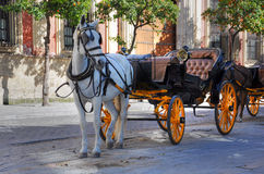 Seville - Tourist horse carriage royalty free stock photography