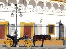 Sevillla, Spanien, 01/02/2007 Ein Wagen mit Pferd und Kutscher stockfotografie