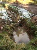 sewage photo stock