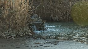 Sewage, bad environment