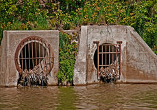 Sewage Pipes. With waste water stock photography