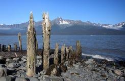 Seward bay, Alaska Royalty Free Stock Images