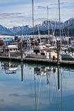 seward för alaska fartygmarina Royaltyfri Fotografi