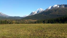 Seward Highway. Alaska Royalty Free Stock Images