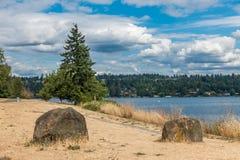 Seward Park Summer. A summer day with billowing clouds at Seward Park in Seattle, Washington Royalty Free Stock Photos
