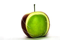 The sewed apple. Half green and half of red apple sewed together a white thread Royalty Free Stock Images