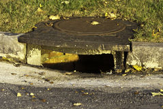 Sewer Drain. An aging sewer drain on a curb and grassy lawn Stock Photography
