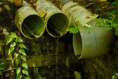Sewerage pipes located at the forest at the tropical island. In Maldives stock photo