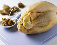 Sewing the chicken with cooking string Stock Photography