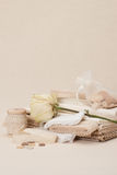 Sewing And Embroidery Craft Kit. Dried Rose. Stock Photography