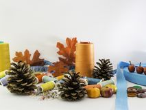 Sewing Fall. A fall decor with sewing materials. royalty free stock image