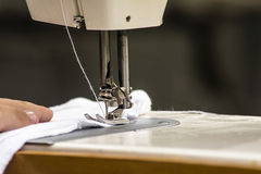 Sewing machine. Needle and sew the fabric Stock Photography