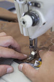 Sewing of parts of a tailored jacket Stock Photos