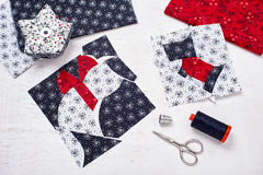 Sewing patchwork of blocks white cat and black dog, sewing accessories Stock Image