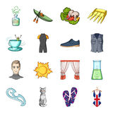 Sewing, sport, travel and other web icon in cartoon style. Fashion, beauty, education icons in set collection. Sewing, sport, travel and other  icon in cartoon Royalty Free Stock Photos