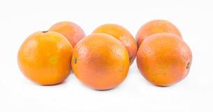 Sex apelsiner på en vit bakgrund - främre sikt Fotografering för Bildbyråer