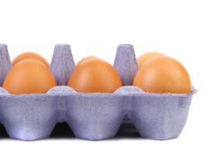 Sex brown eggs. Sex brown eggs in a blue egg box Stock Images