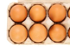 Sex brown eggs in egg box. Isolated Royalty Free Stock Photos
