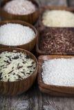 Sex bunkar med olika variationer av ris Arkivbilder