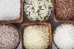 Sex bunkar med olika variationer av ris Arkivfoto