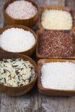 Sex bunkar med olika variationer av ris Royaltyfri Foto