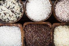 Sex bunkar med olika variationer av ris Royaltyfri Fotografi