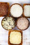 Sex bunkar med olika variationer av ris Fotografering för Bildbyråer