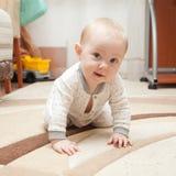 Sex gamla månad behandla som ett barn på mattan Fotografering för Bildbyråer