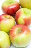 Sex nya äpplen på en vit bakgrund Royaltyfri Bild